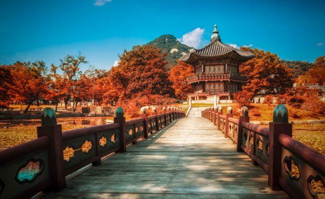 Lý do bạn nên đi du lịch đất nước Hàn Quốc vào mùa thu 1