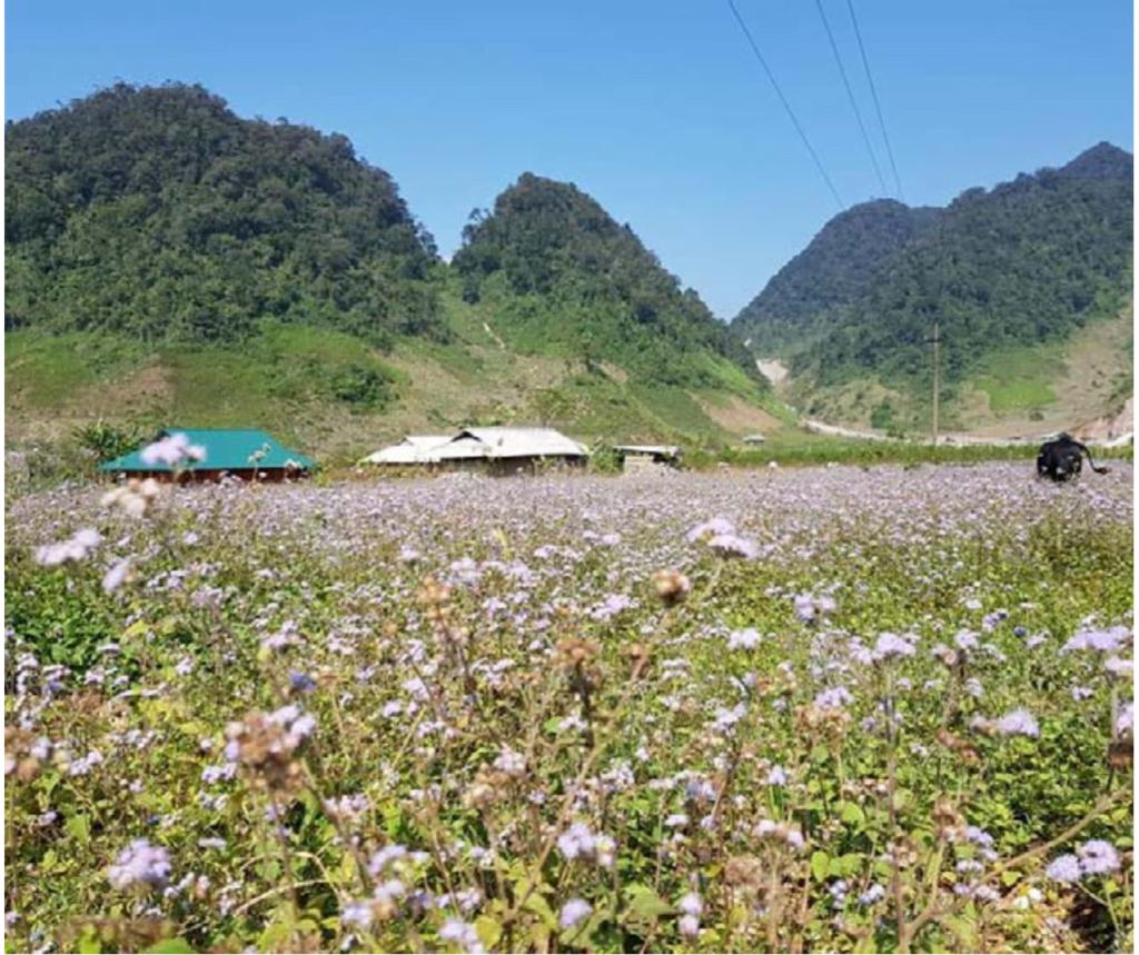 Tỉnh Hòa Bình tìm cách phát triển du lịch ở xã Hang Kia, Pà Cò 1