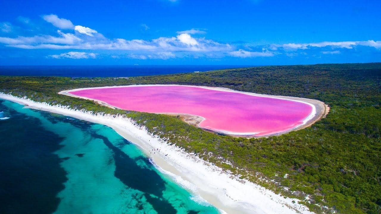 Kết quả hình ảnh cho Hồ nước màu hồng Hillier