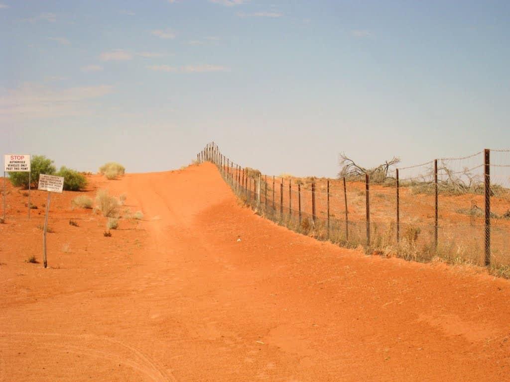 Kết quả hình ảnh cho hàng rào Dingo